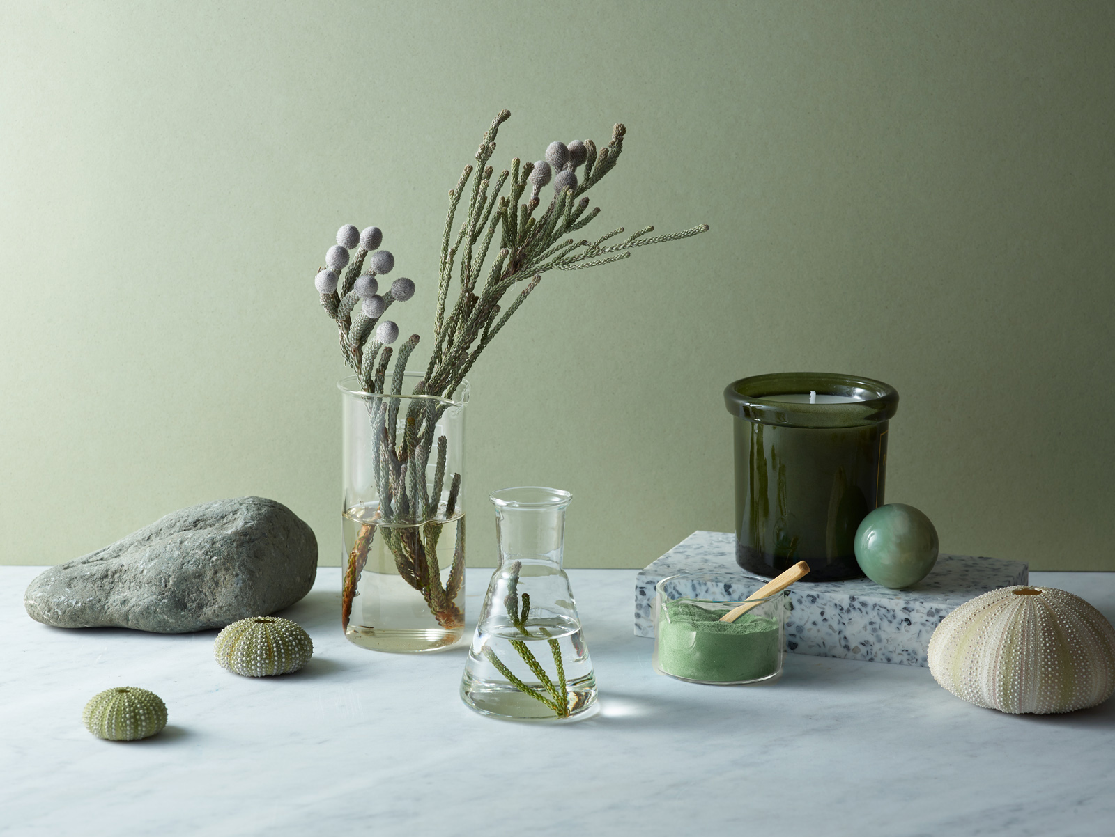 Still life photography with natural home decor