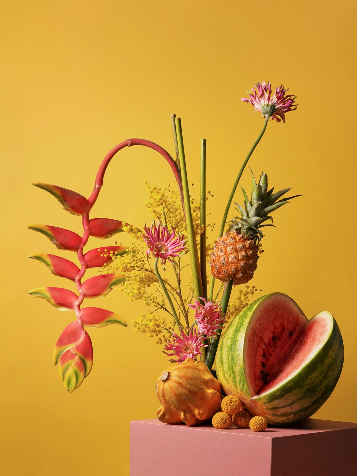Cosmosplantea0007-1-1